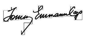 Tommy-Emmanuel-Signature-300x135